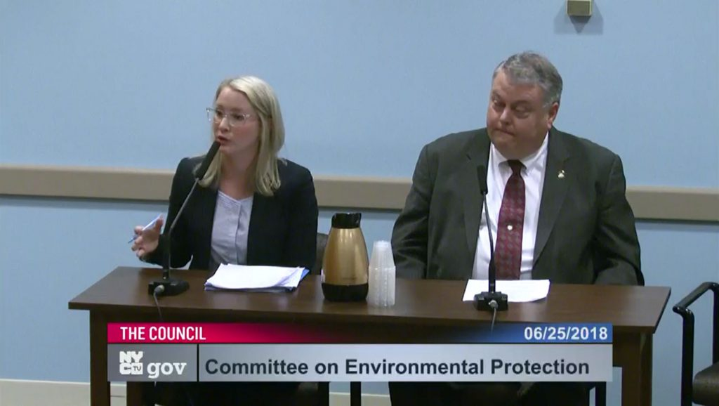 McIver & Klock - NYC Council - testifying on backflow